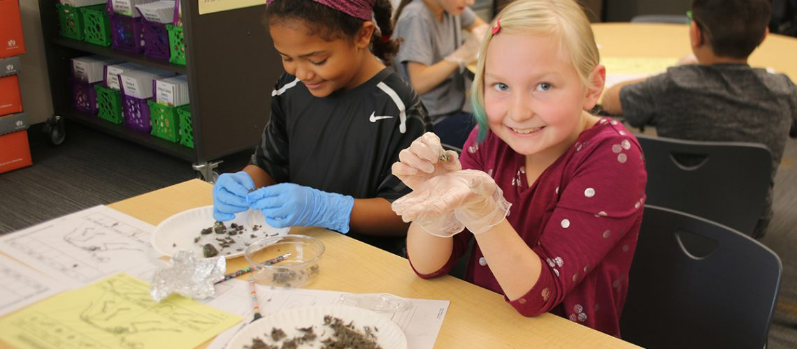 Students dissect owl pellets