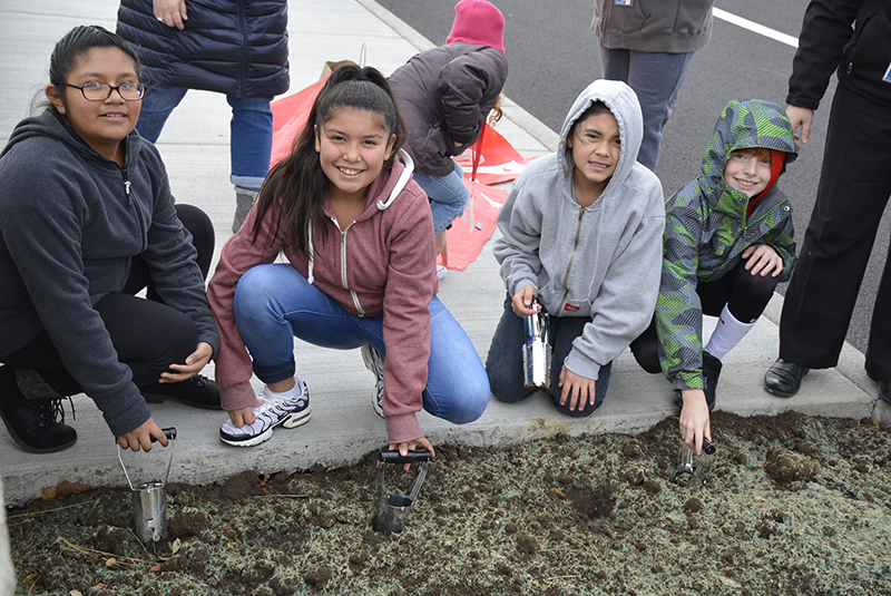 Students plant tulips for Red Ribbon Week
