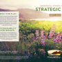 thumbnail sized cover of strategic plan with flowers in the gorge on cover