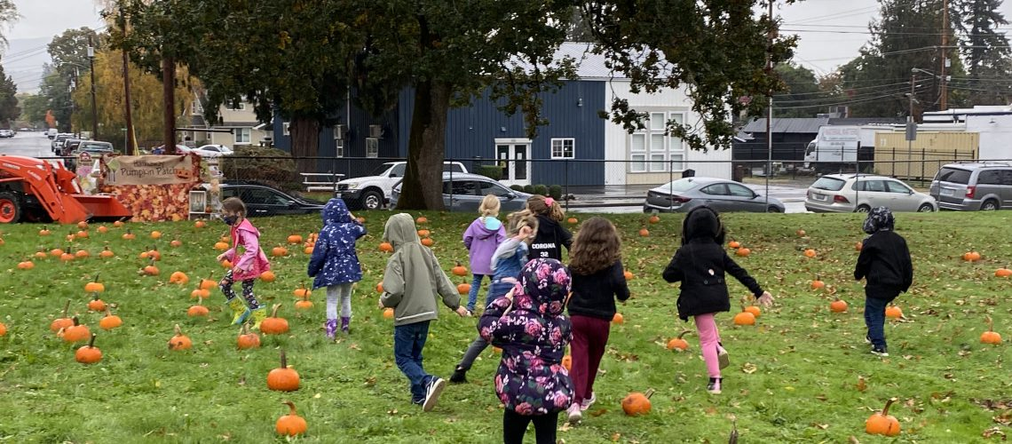 kindy students running in pumpkin patch